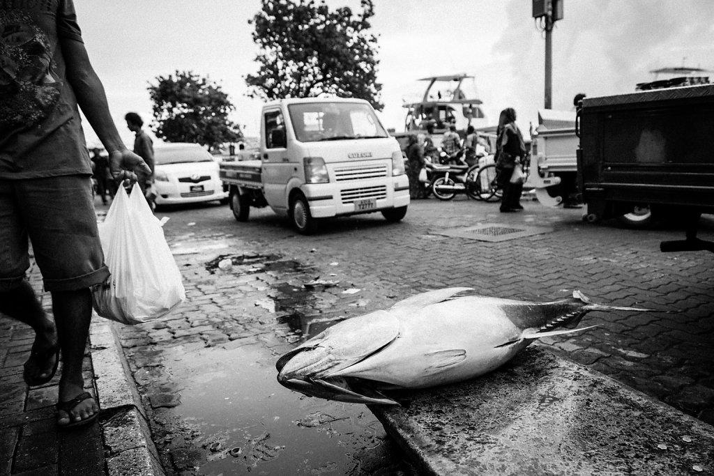 Sri-Lanka-58.jpg